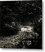 The Woods Metal Print by Anthony Bean