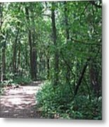 Stopping By Woods Metal Print