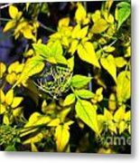 The Yellow Plant Metal Print