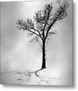 The Young Wind  Metal Print