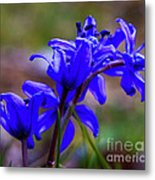 Then It Was Spring 3 Metal Print