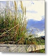 Therapeutic View Metal Print
