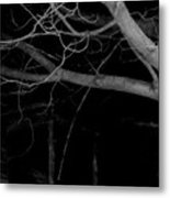 There In The Silence Metal Print