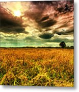 There Is A Sun After The Storm Metal Print
