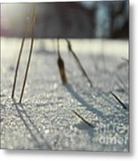 There Is Light Metal Print