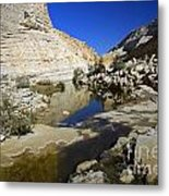 There Is Water In The Desert 02 Metal Print