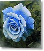 There Were Roses Triptych 2 Metal Print