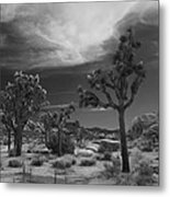 There Will Be A Way Metal Print by Laurie Search