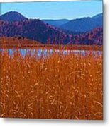 There's A Lake Over There Metal Print