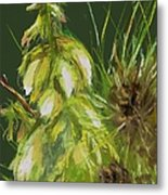 Theres A Yucca In My Yard Metal Print