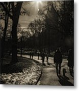 They Come To Central Park Metal Print