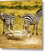 They See Me Rollin Metal Print