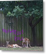 They Will Never Think It Was Us.. Metal Print