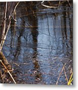 Thin Ice Of A New Day Metal Print