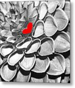 This Heart Is For You Metal Print