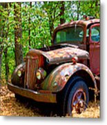 This Ol' White Can't Stay In Sight 10-4 Metal Print
