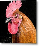 this Rooster Means Business Metal Print