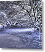 This Way To Fairy Glen Metal Print