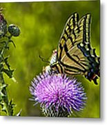 Thistle Do Just Fine Metal Print