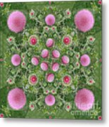Thistle Star Mandala Metal Print