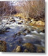 Thomas Creek Metal Print