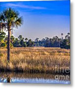 Those Quiet Sounds Metal Print by Marvin Spates