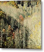 Those West Virginia Hills Metal Print