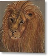 Thoughtful Lion 2 Metal Print