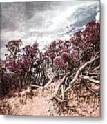 Thoughtless Roots  Metal Print