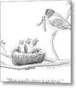 Three Baby Birds In A Nest Talk To A Grown Bird Metal Print