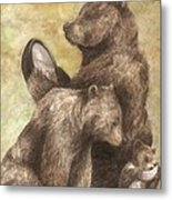 Three Bears Metal Print by Meagan  Visser