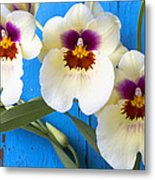 Three Exotic Orchids Metal Print
