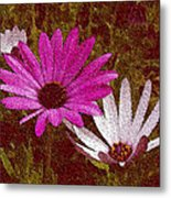 Three Flowers On Maroon Metal Print