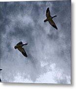 Three Geese Metal Print