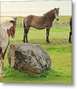 There Were Three Horsegirls And One Big Gray Stone  Metal Print