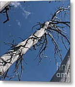 Three Gray Trees Metal Print