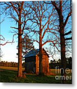 Three Guardians  Metal Print by Lorraine Heath