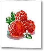Three Happy Raspberries Metal Print