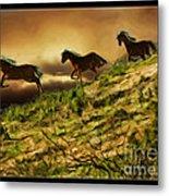 Three Horse's On The Run Metal Print