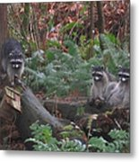 Three Is A Crowd Metal Print