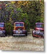 Three Old Friends Metal Print by Kandy Hurley