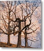 Three On The Hill - Color Metal Print