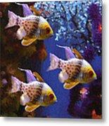 Three Pajama Cardinal Fish Metal Print