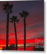 Three Palm Sunset Metal Print