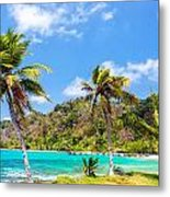 Three Palm Trees In Panama Metal Print