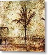 Three Palms 6 Metal Print