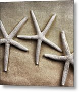 Three Starfish Metal Print