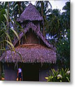 Three Story Hut 2 In Color Metal Print