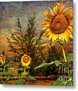 Three Sunflowers Metal Print