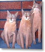Three Tan Cats Metal Print